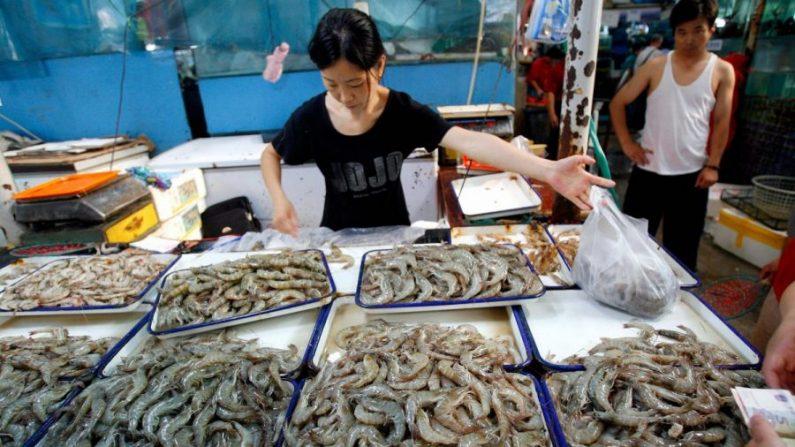 Le cas inquiétant des crevettes injectées de gel industriel venant de Chine