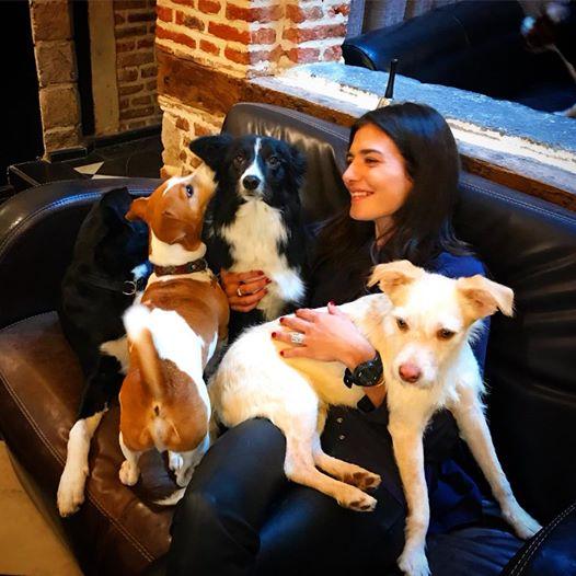 Le café lillois accueille des chiens abandonnés et propose aux clients de les adopter – c'est unique en Europe