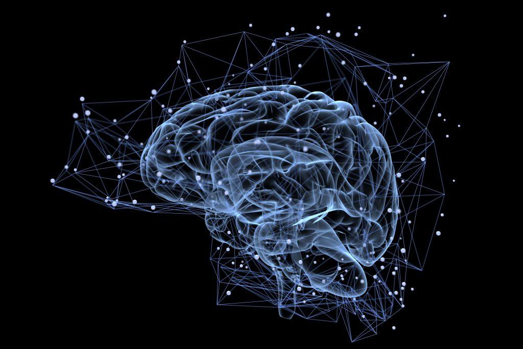 Oublier des choses du quotidien serait signe d'une grande intelligence selon des chercheurs