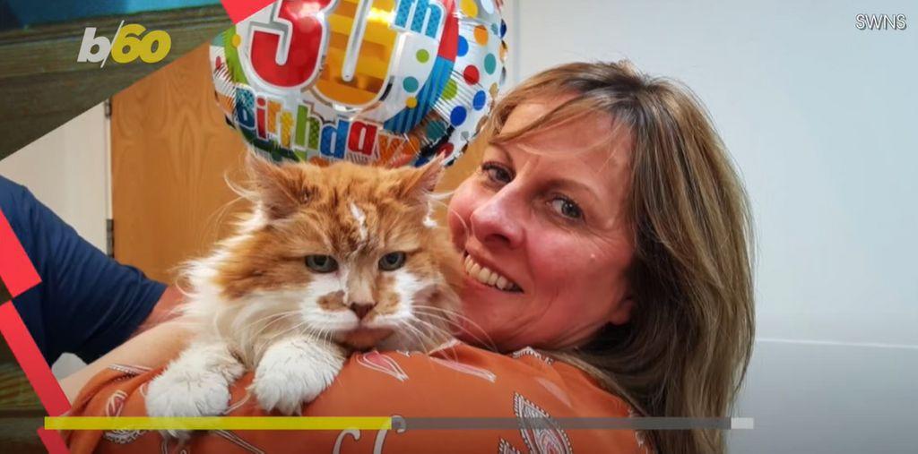 Rubble, le plus vieux chat du monde, est mort à l'âge de 31 ans, soit l'équivalent de 150 années humaines